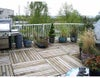 # 306 8772 SW MARINE DR - Marpole Apartment/Condo for sale, 2 Bedrooms (V733066) #5